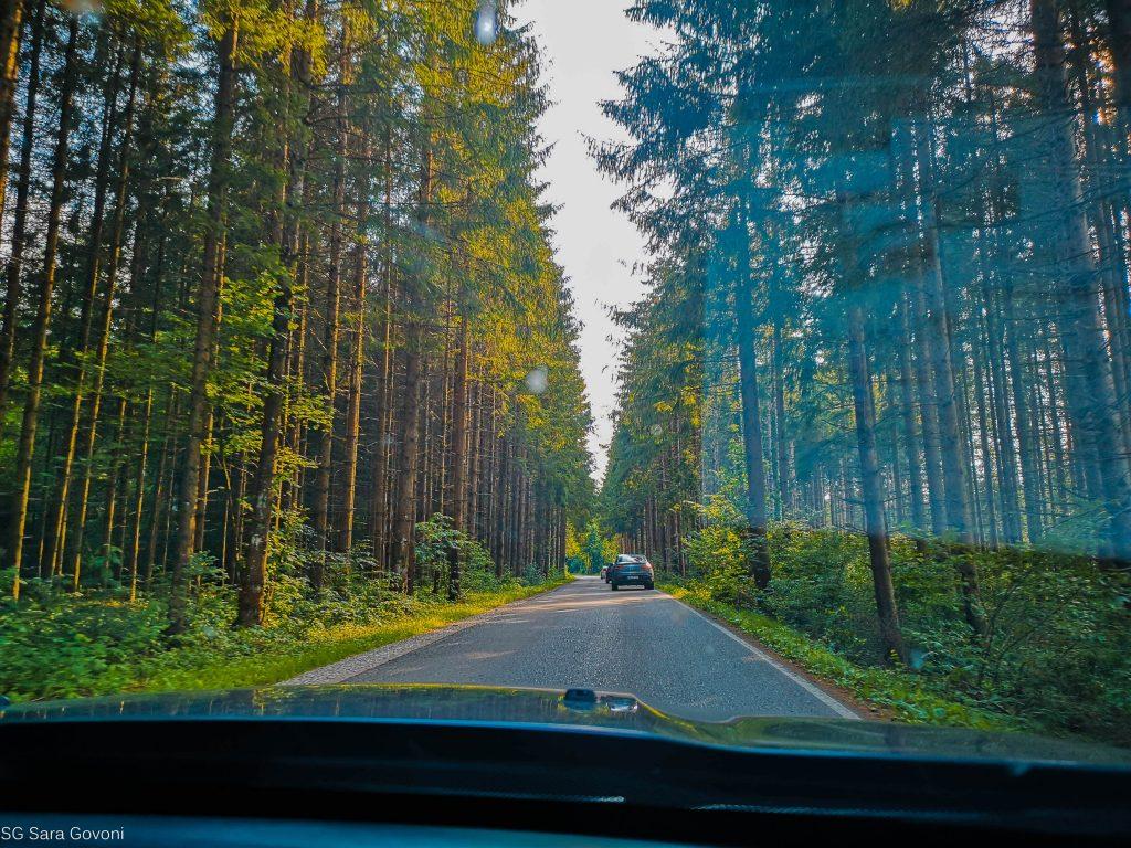 Come organizzare un on the road in Baviera