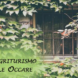 Angoli nascosti in provincia di Ferrara: l'agriturismo Le Occare