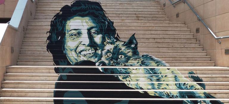 Alla ricerca dei gatti di Roma: itinerario gattaro per la Città Eterna