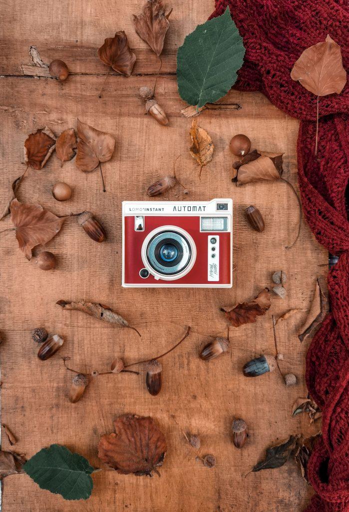 Sfumature rosse: dove ammirare il foliage a Bologna e dintorni