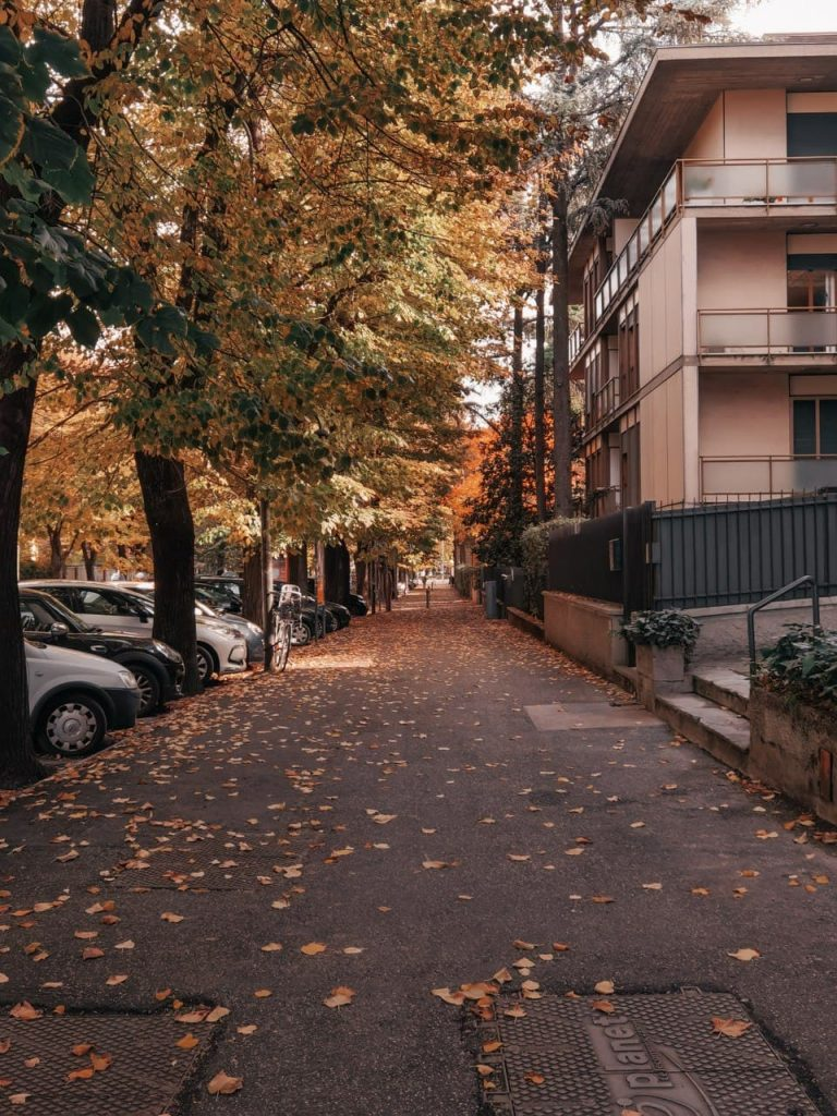 Viale autunnale foliage a Bologna