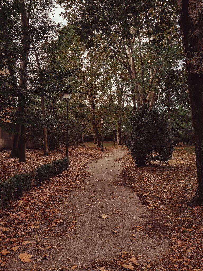 Parco Massari in autunno per ammirare il foliage a Ferrara