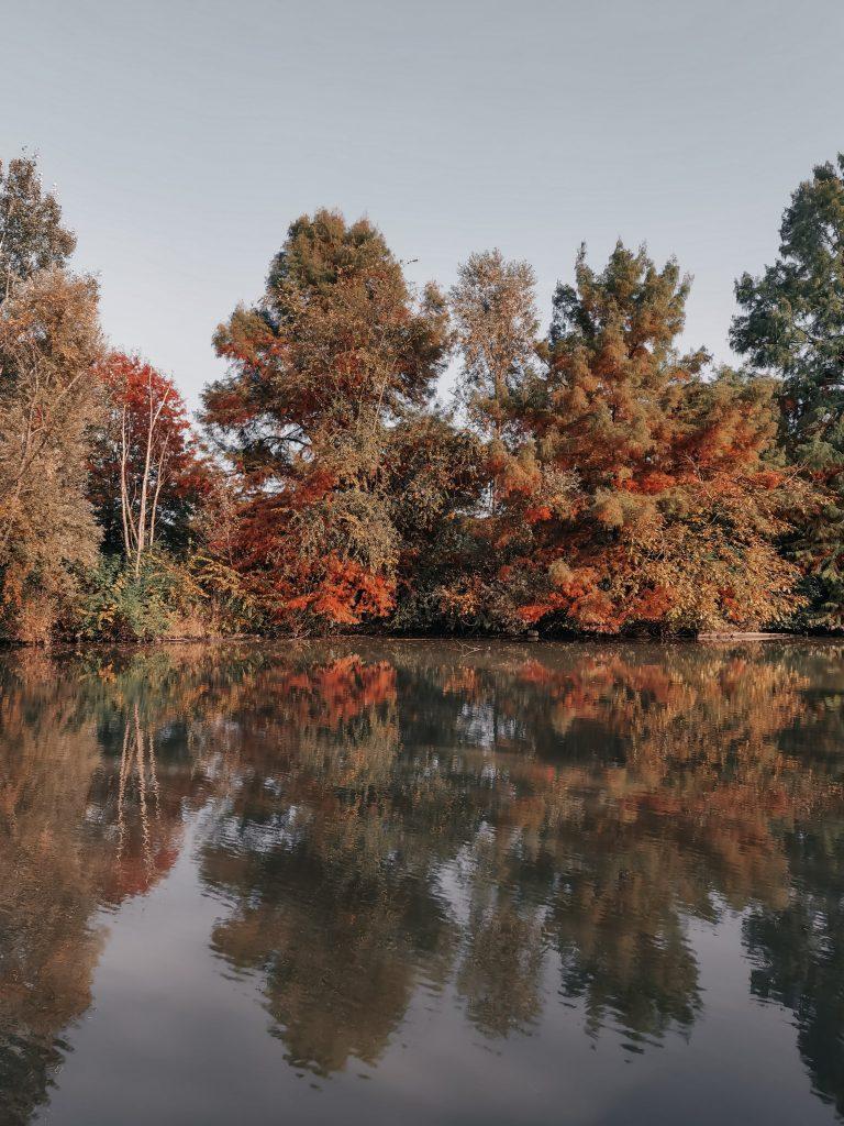 Foliage a Ferrara Parco Urbano