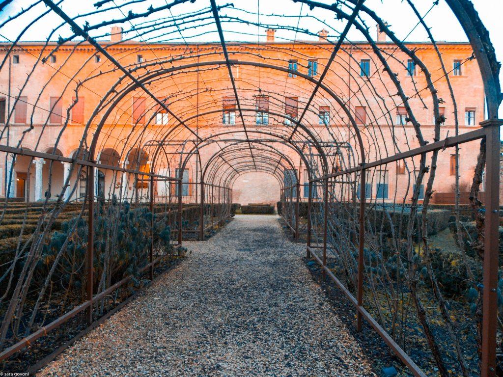 Nei luoghi romantici di Ferrara: il tunnel delle rose in inverno, comunque suggestivo