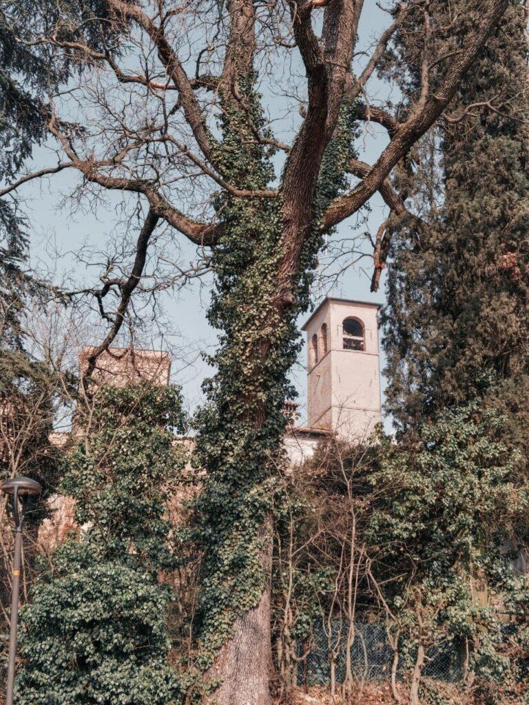 parco del Castello di Montegibbio
