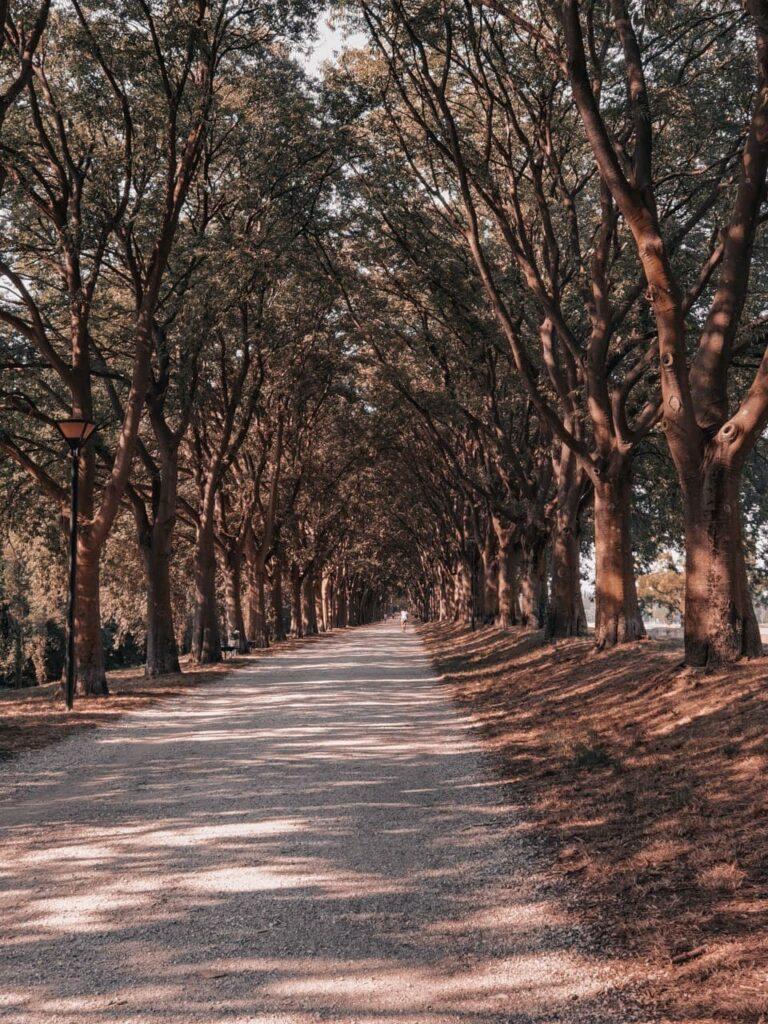 Tour per le mura di Ferrara: itinerario tra storia e natura