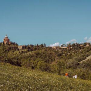 Raggiungere i 300 scalini di Bologna: una delle migliori viste dei colli