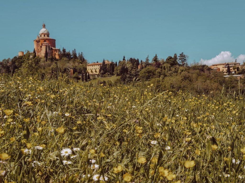 San Luca immersa nei fiori dei 300 scalini