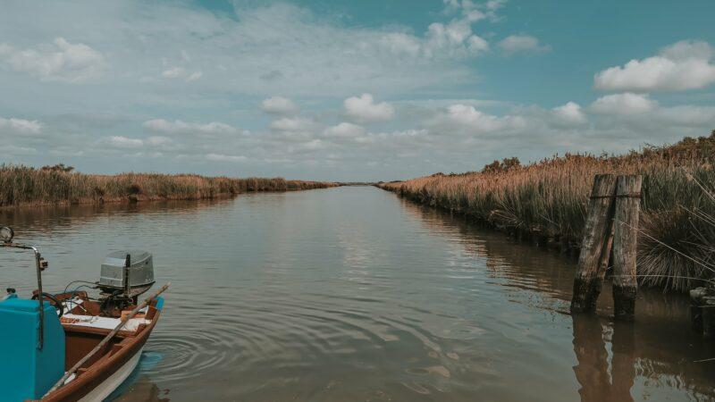 Alla scoperta del Delta del Po emiliano romagnolo: nel territorio ferrarese