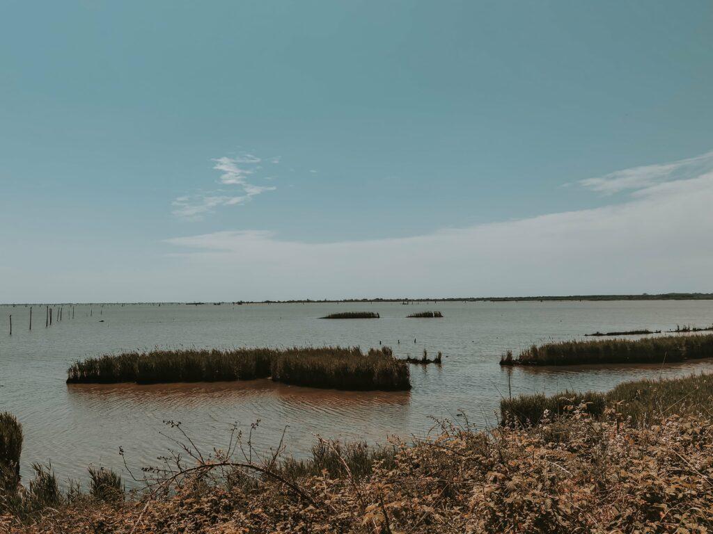 sacca di goro esplorazione del delta del po emiliano romagnolo