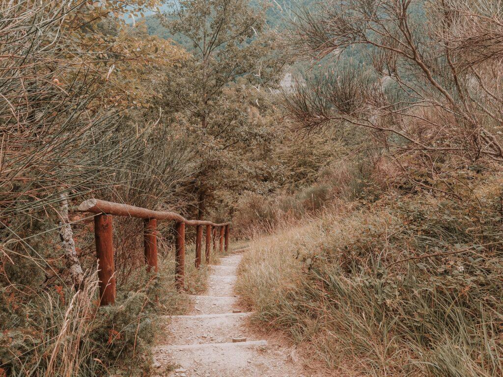 sentiero per raggiungere il rifugio ca di sopra, tratto a gradini