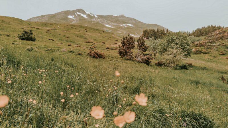 Come raggiungere il Monte Cimone: salire sulla vetta più alta dell'Emilia Romagna