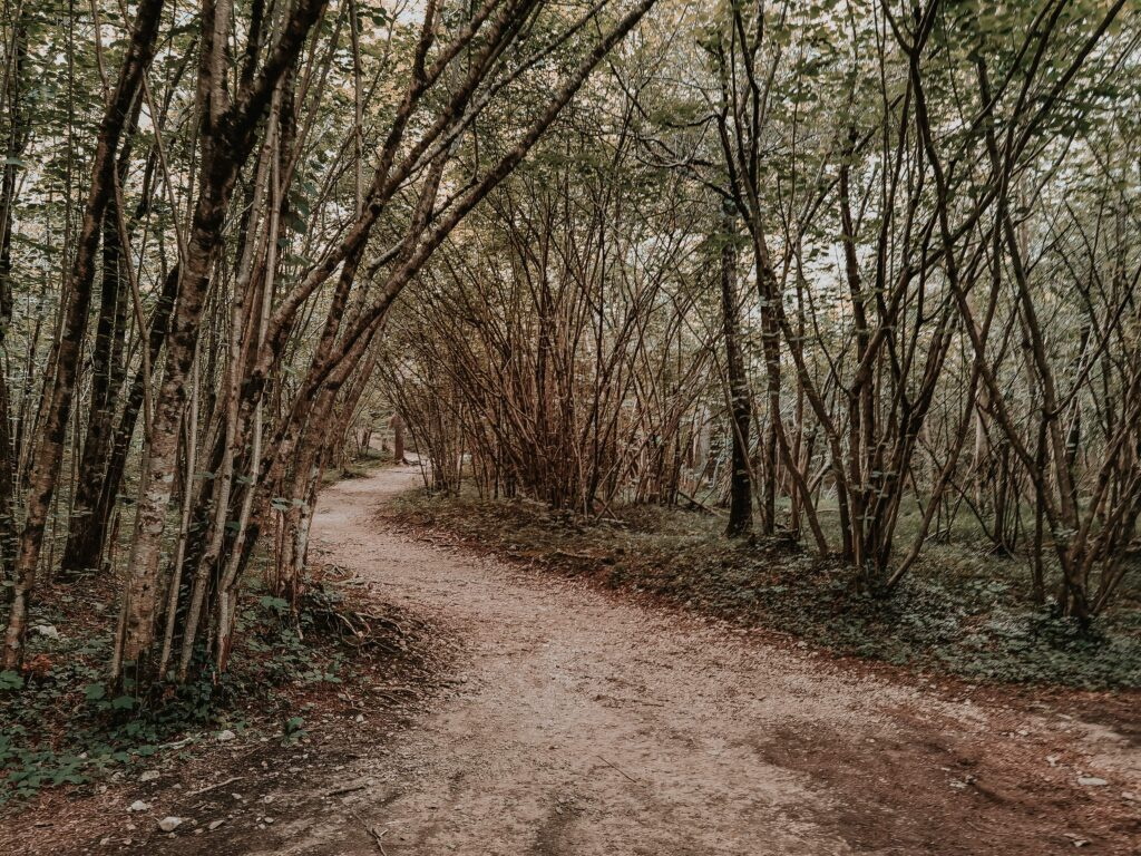 sentiero per i cadini del brenton