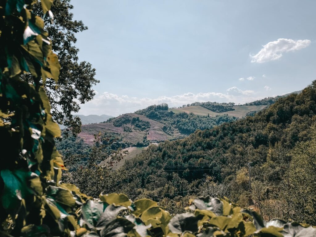 panorama da borgo basino
