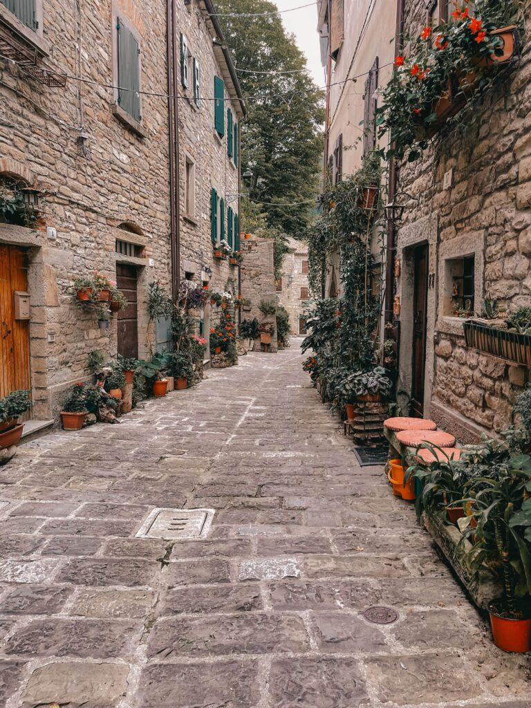 via fiorita di Portico in Romagna